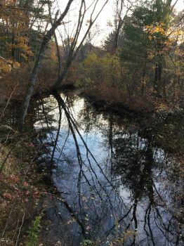 Spencer brook