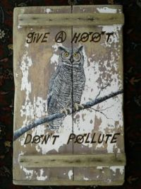 Give a hoot don't pollute