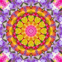 kaleidoscope 342 colours large