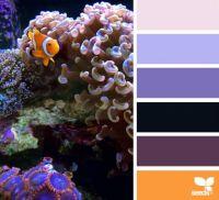 ColorSwim4_150