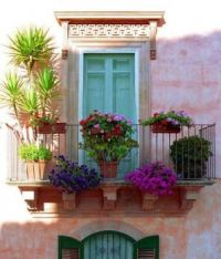 Potted Balcony 4