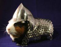 battle companion