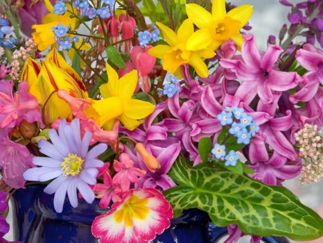 spring_flowers_from_the_garden