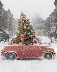 Fijne kerst.