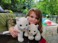 Kailee and her kitties