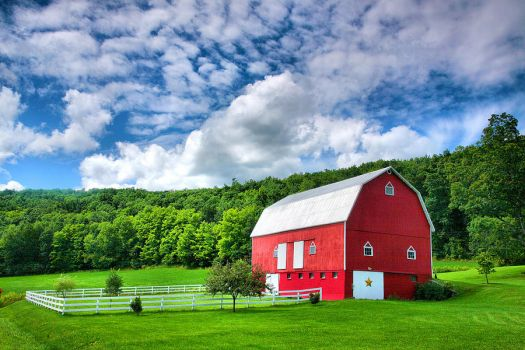 Finger Lakes Barn