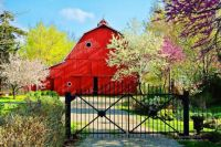 Red Barn in Spring