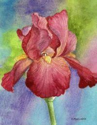 watercolor watercolour