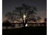 Super Moon Over White Rock Lake.jpg 2011-03-19