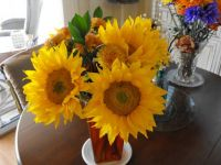 Lovely sunflowers.