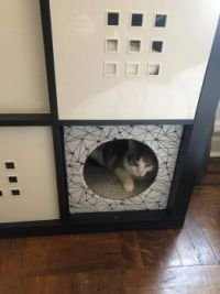 Princess in her Ikea box