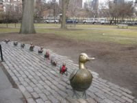 Make Way for Ducklings - Boston Common