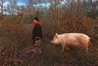 The Truffle Hunters,  Dordogne, France. 1984.