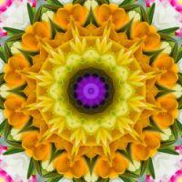 kaleidoscope 336 in yellow large
