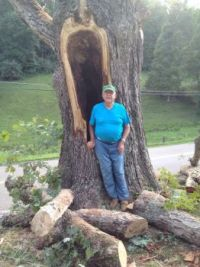 Dad and the tree