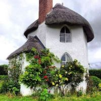 Double Storey Thatched