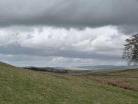 Lyme Park (towards the Peaks)