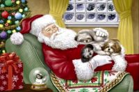 Sleeping Santa and Pups