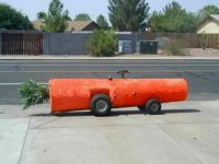 Carrot shaming #18