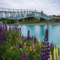 Foot bridge over Lake Tekapo New Zealand