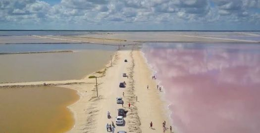 Las Coloradas in The Yucatán Peninsula