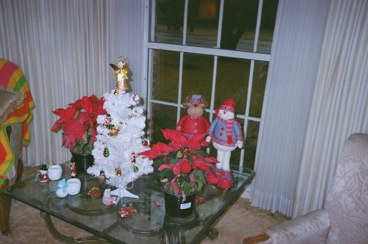 Little Christmas Display