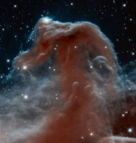 New Horsehead Nebula