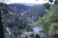 Yellowstone River gorge...