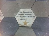 TVD - Ian Somerhalder
