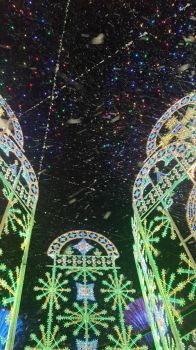 The Bright Lights of Singapore