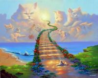 Todos los Gatos Van al Cielo - All Cats Go to Heaven