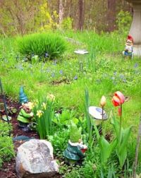 After four days of rain, flowers are popping up and the grass needs cutting