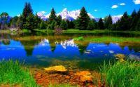 Nature's beauty 1