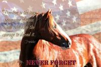 wild mustangs.  Our veterans That enabled and made the USA