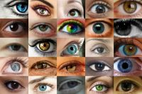 Women's eyes close up 1 (small)