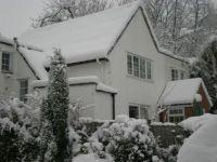 Snow Jan 2010 009