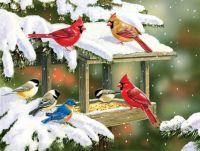 Winter Snacks by William Vanderdasson