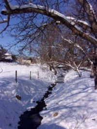 Winter in our village