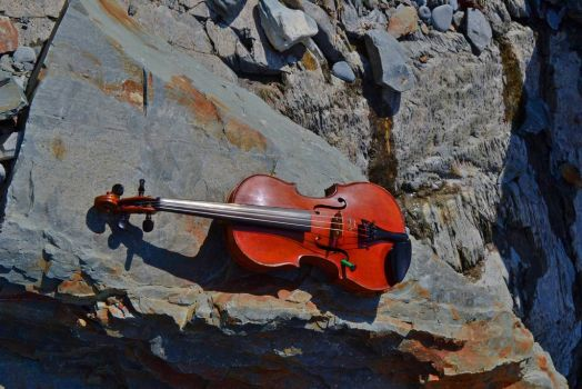 Fiddle on the Rocks, Bay Roberts, NL
