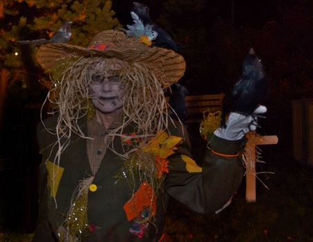 Scarecrow with pet crow, Bay Roberts, NL