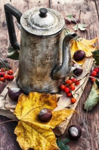 An Old Coffee Pot