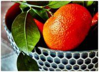 A Very Fresh Picked Orange