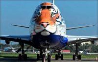 Jet Aircraft Art- Tiger Conservation