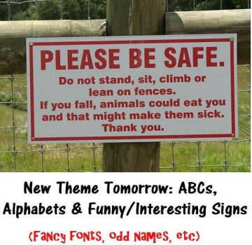 "New Theme Tomorrow: """"ABCs, Alphabets & Funny/Interesting Signs""  Give us a laugh this week.  Virtual hugs, stay well."