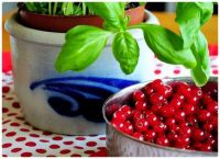 A Bowl of Cranberries and a Potted Basil Herb