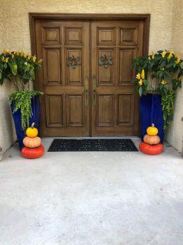 Pretty pumpkins at front door