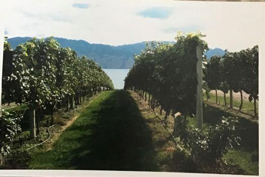 Okanagan British Columbia winery