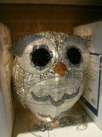 Christmas Owl ?