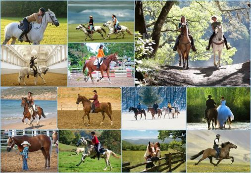 Theme Horses: Horseback Riding - larger