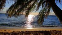 maui beach 2017